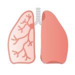 演奏する時の呼吸は普段の呼吸の延長上にある